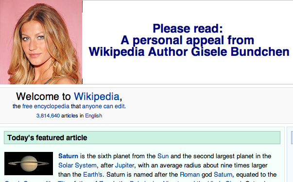 Wikipedia Finally Uses Attractive Person to Raise Money