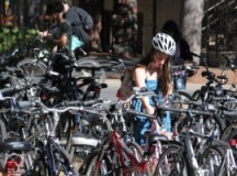 Report: Stanford Authorized New Bike Theft Task Force to Use 'Enhanced Bike Retrieval Tactics'