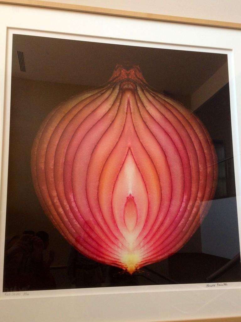 """Very Vaginal"" Onion Disrupting Dining in Arrillaga"