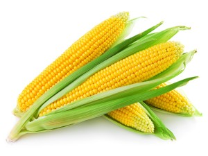 Op Ed: Corn is Very Useful