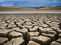 "Stanford Assures Students: Drought is ""Top Priority"""