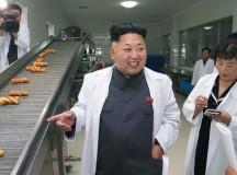 Kim Jong Un in Recovery