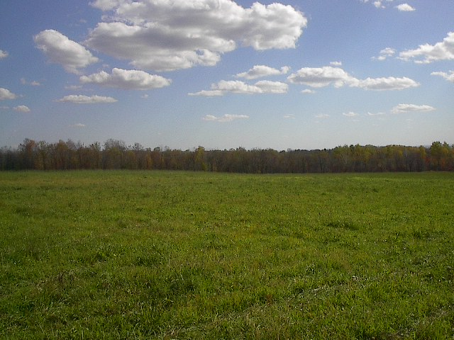 Local School Field Trip Actually Just Trip To An Empty Field