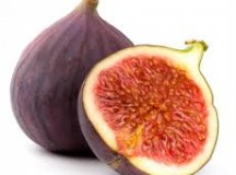Fig Lame