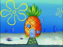 Spongebob Not Ready, Emergency Preparedness Report Finds