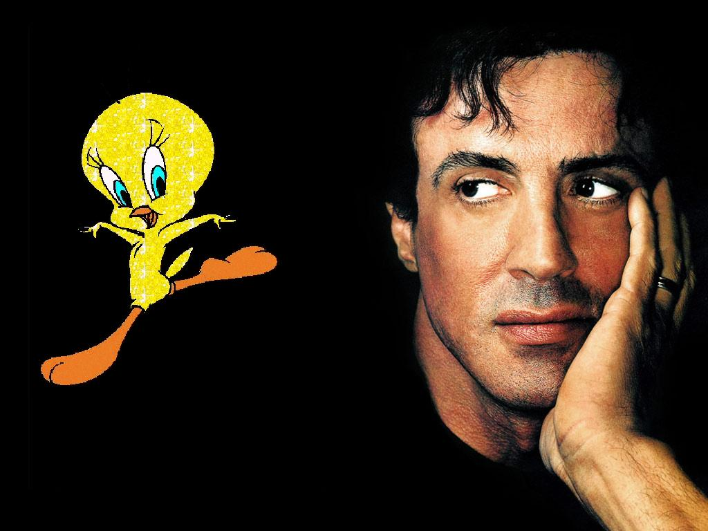 Sylvester Still Unable to Catch Tweety Bird