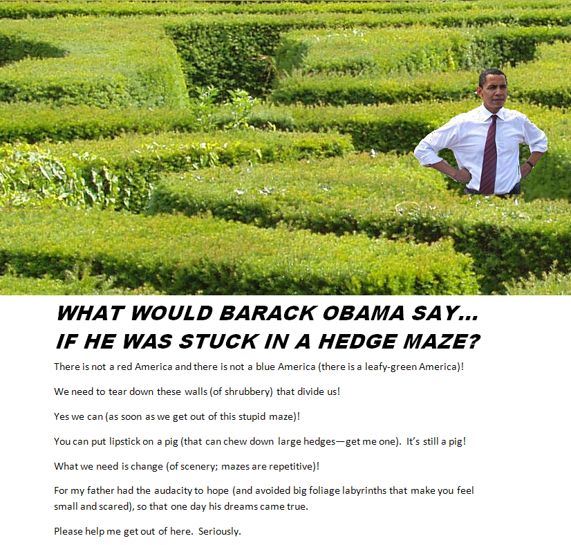Graphic: What Would Obama Say if He Was Stuck in a Maze?