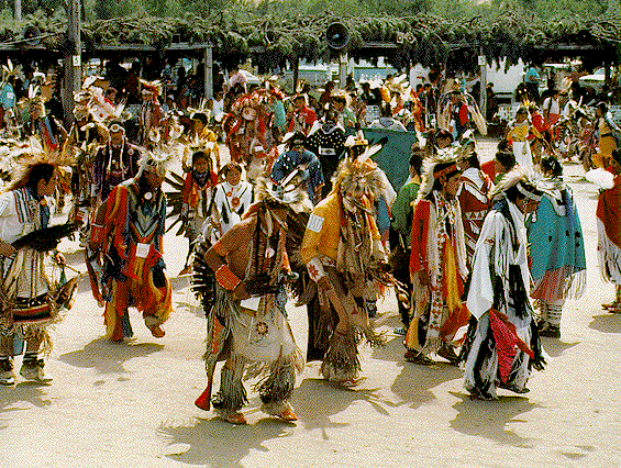 Too Many Onions Cause Pow-wow Participants to Leave in Trail of Tears