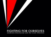 Op Ed: My Body is an Anarcho-Syndicalist Workers Collective, and I Am Merely Its Elected Delegate