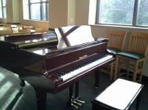 Report: Asshole At Arrillaga Dining Thinks You Want to Hear Him Play Piano