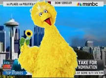 Big Bird Goes Solo, Becomes MSNBC Pundit