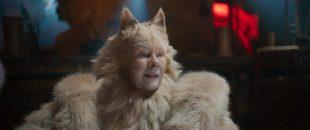 Climate Change Deniers Describe Australian Fires as God's Punishment for Cats