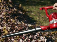 Leaf Blowers are the Chosen of God, and We Will Never See Their Faces
