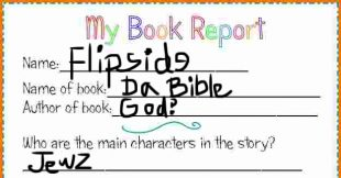 Flipside Review of the New Testament