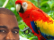 New Kanye West Music Video Just Him Huffing Paint and Fighting a Parrot