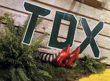 TDX House Comes Back from Tornado, Lands On Top of Wicked ResEd Dean of the South