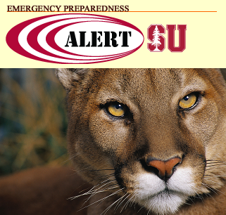 Cougar Spotted on Campus: If Sighted, Wave Your Arms, Try to Look Older