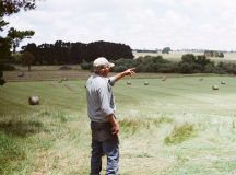 Turnips Are Doing Fine This Season, Says Farmer Bob