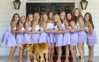 Sorority Sisters Gather for Weekly Youth-Replenishing Calf Sacrifice