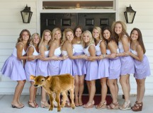 Sorority Sisters Gather for Weekly Youth-Replenishing Calf Sacrifice
