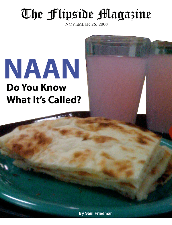 The Flipside Magazine – Naan: Do You Know What It's Called?